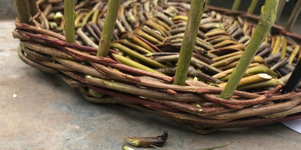 Willow Basket Weaving Workshop. 2 Day Course £145.00 All materials included