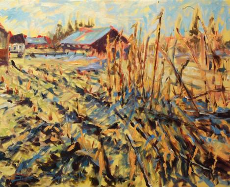 Light Through the Stalks, 20x16 acrylic on canvas