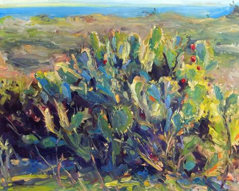 Crystal Cove Cacti II 20x16 oil on board