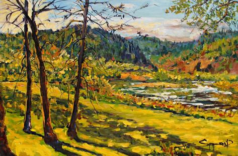 Morrison's Lawn Light Rogue River 24x18