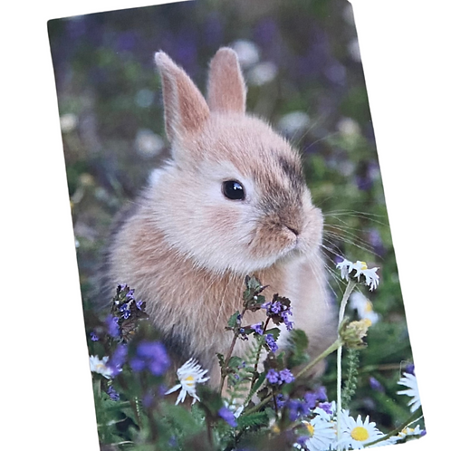 Bunny Greetings Card With Your Personal Message