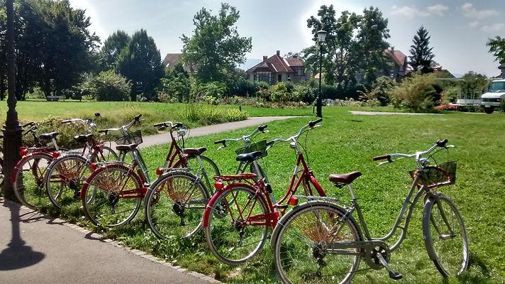 bikes that we use for Ljubljana bicycle tour.