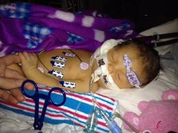 Eden Neville Newborn