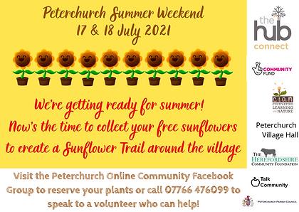 Sunflower Trail advert web.png