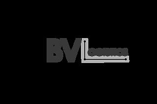 BV Logistics Logo PNG.png