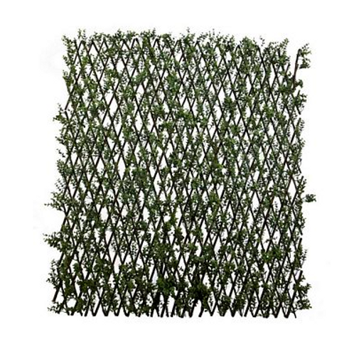 Boxwood Expanding Lattice Screen