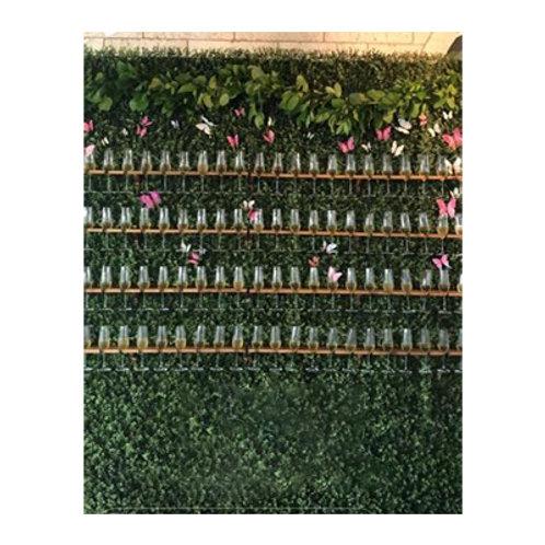Champagne Boxwood Wall