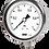 Thumbnail: Đồng hồ áp suất P255 (vỏ inox chân inox)