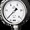 Thumbnail: Đồng hồ áp suất (dầu) WISE P258 (inox toàn bộ, chuẩn CE Châu Âu)