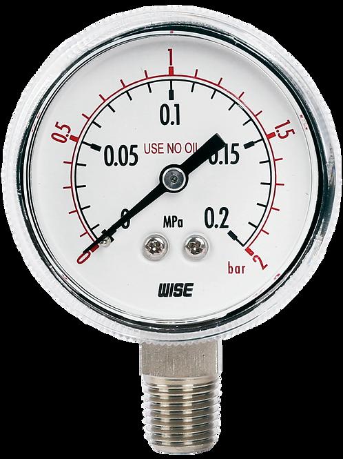 Đồng hồ áp suất P113