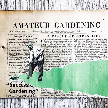 Amateur gardener