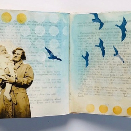Red Cross Manual journal