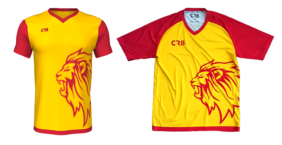 lionsjersey.png