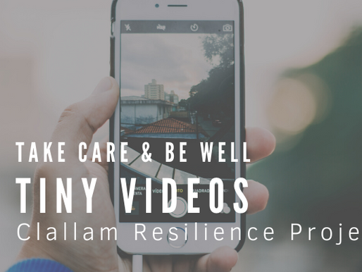 Take Care & Be Well: Tiny Video Project
