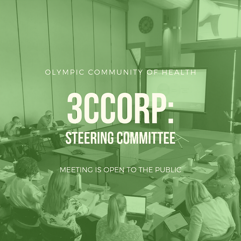 Steering Committee: Three-County Coordinated Opioid Response Project