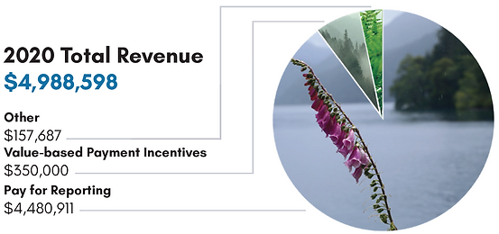 Revenue-2021.PNG