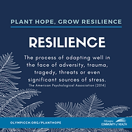 What is resilience_.png