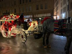 Carriage Ride in San Antonio 2