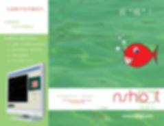 nshot chinese brochure