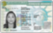 green_card_PNG11.png