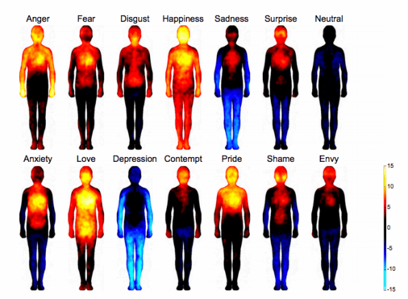 Evidence of the Emotional Body