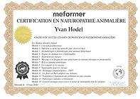 Certificat - Yvan Hodel .jpg