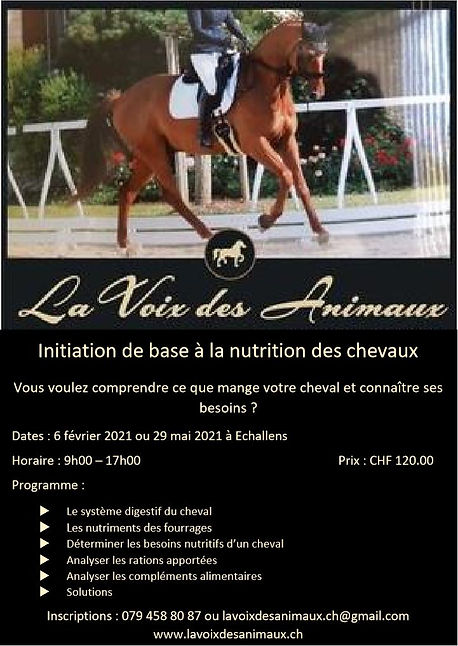 Flyers initiation alimentation chevaux.J