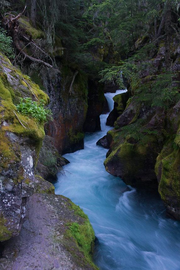 Avalanche Creek 3.jpg