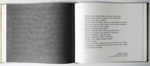Miedos cruzados. Libro