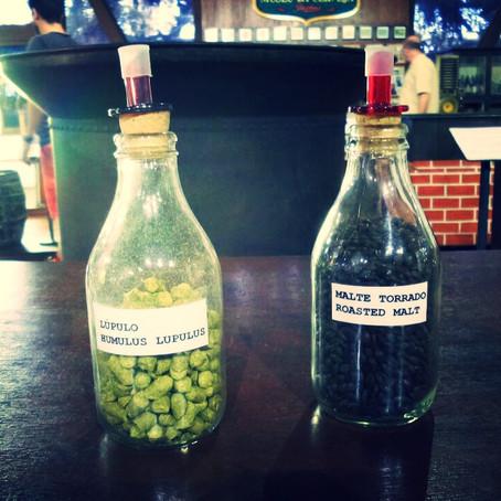 Santa Catarina: rota da cerveja - 4 dias