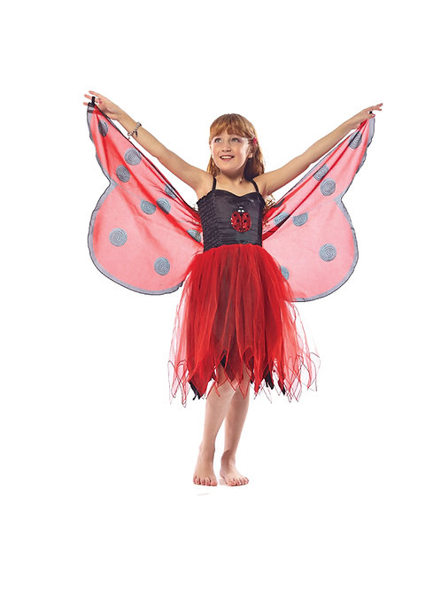 Fly-Away Dresses, Ladybird