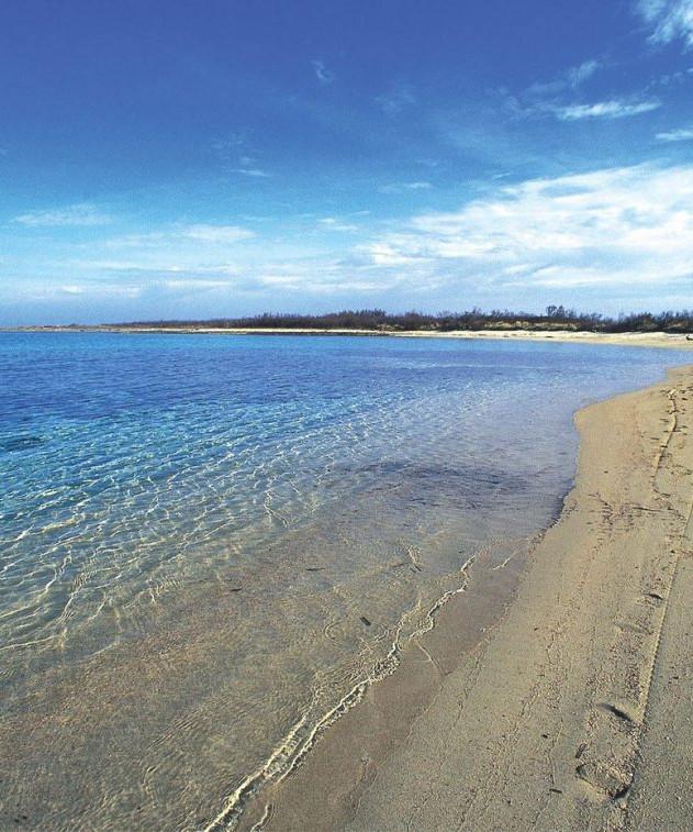 """Meeresschutzgebiet """"parco dune costiere"""""""
