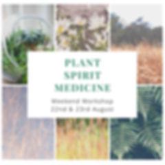 plant spirit medicine jpeg.jpg