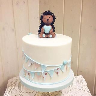 Hedgehog baby party 🦔💖. . . .jpg