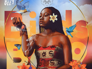Sampa The Great - 'Birds and the BEE9'