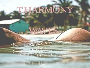 T.Harmony -  Waves