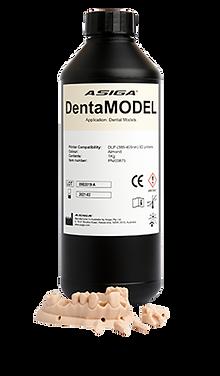 dentaModel.png
