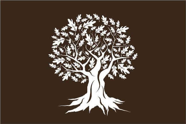 tuck tree.jpg
