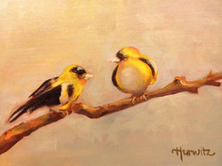 """Gold Finches (sold) 8""""x10"""""""