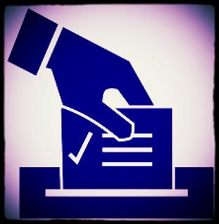 Fort Bend Democrats voting