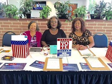 Fort Bend Democratic Activists in Action
