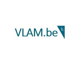 VLAM 3.PNG