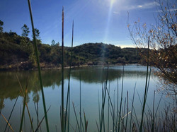 The big swimming lake