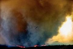 Wildfire2020 - 4.jpeg