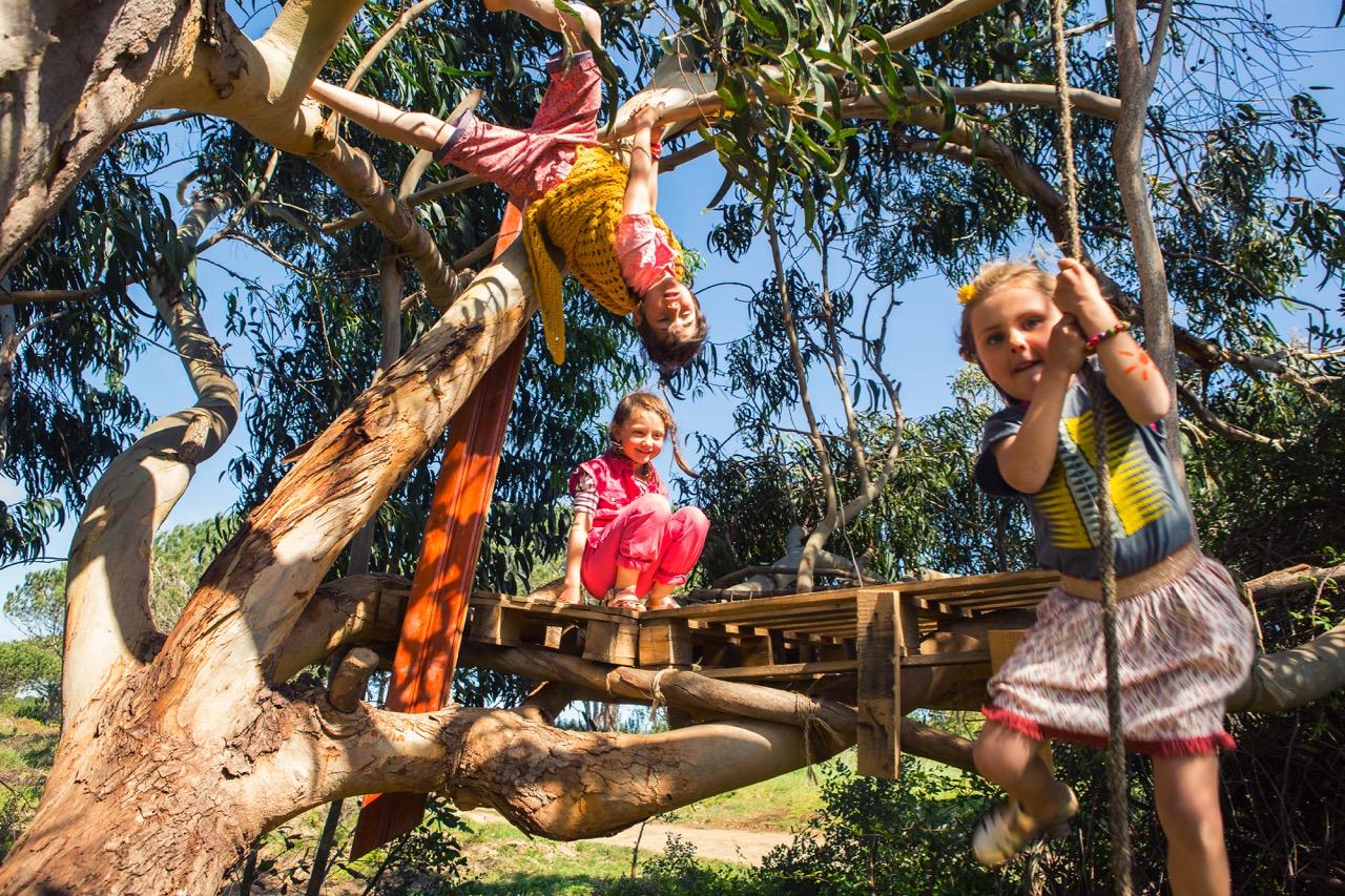 Swinging ropes and tree huts