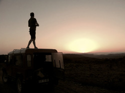 Into the wild look like