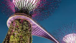 Singapore's long term emissions targets
