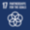 SDG 17.png