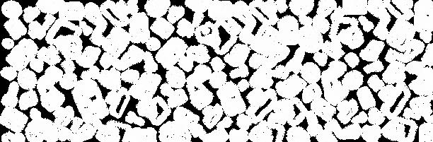 TextureIconeBaseTrasparenteBASE1Rid.png