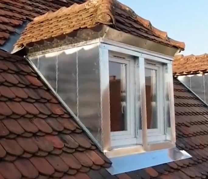 chien assis_shilliik_drone&toit.jpg